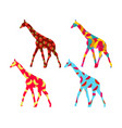giraffe with a pattern of berries and fruit vector image vector image