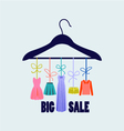 hanger with fashion women summer clothing vector image