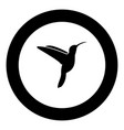 hummingbird icon black color in round circle vector image vector image