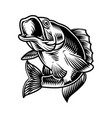 largemouth bass fish vintage concept vector image