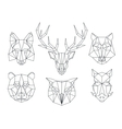 Low poly animals heads Triangular thin line vector image vector image