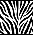 seamless pattern with zebra stripes vector image vector image