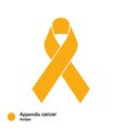 appendix cancer ribbon vector image vector image