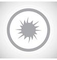 Grey starburst sign icon vector image vector image