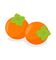 persimmon fruit on white background vector image vector image