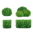 bush set vector image