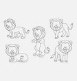 cartoon lion thin lines collection isolated on whi vector image vector image