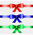 color bow knot vector image vector image