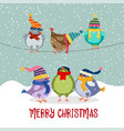 cute christmas card with birds vector image vector image