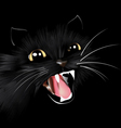 Evil black cat halloween background vector image