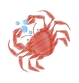 hand drawing crab sealife crustacean food bubbles vector image vector image