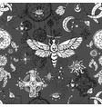 seamless pattern with moth - symbol death vector image