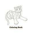 Tiger cartoon coloring book vector image