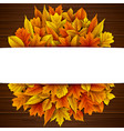 autumn leaves circle with blank banner vector image vector image
