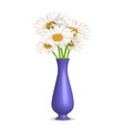 Chamomiles in vase isolated on white vector image vector image