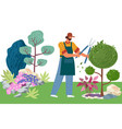 gardener cuts a tree pruning bushes and garden vector image