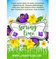hello spring flowers floral poster vector image vector image