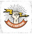 Lightning Logo Emblem vector image vector image