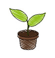 little plant seeding ecological icon vector image vector image