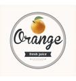 Orange juice natural product vector image vector image