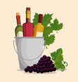 set red wine bottles and grapes vector image vector image