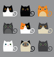 various cute cats vector image vector image
