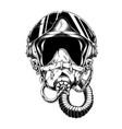 army air force pilot helmet