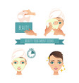 beauty treatment facial mask vector image vector image