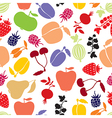 berries pattern vector image vector image