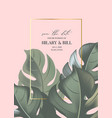 pink paradise green monstera leaves greeting card vector image