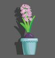 tulips grey background vector image vector image