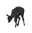 baby deer silhouette vector image vector image