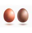 chocolate egg mini set with shadows vector image
