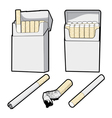 cigarette pack cartoon graphic vector image