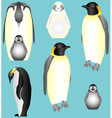 Emperor Penguins vector image
