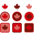 Maple leaf flat design vector image vector image