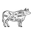 meat diagram cow engraving vector image vector image
