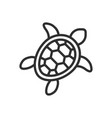 turtle line icon images vector image