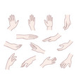hand collection vector image