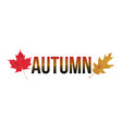 autumn word art vector image vector image