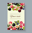 Berry mix banner vector image vector image