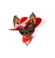 doggie in a summer hat vector image vector image