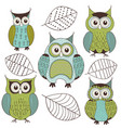 set isolated cute color owls vector image