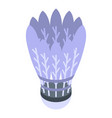 shuttlecock icon isometric style vector image vector image
