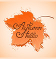 yellowed maple leaf hello autumn hand lettering vector image