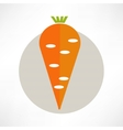 carrot yummy vector image