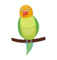 Cartoon parrot bird vector image vector image