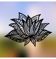 Lotus on the gradient mesh background vector image vector image