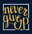 never give up motivational quote handdrawn vector image vector image