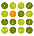 set hand drawn floral icons vector image vector image